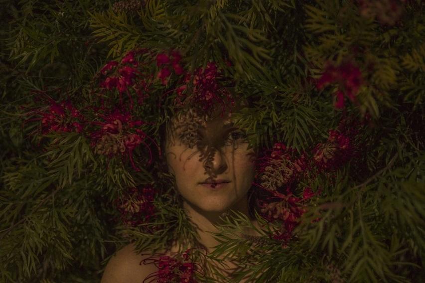Itamar Freed - Red Flowers, 2016, minus37