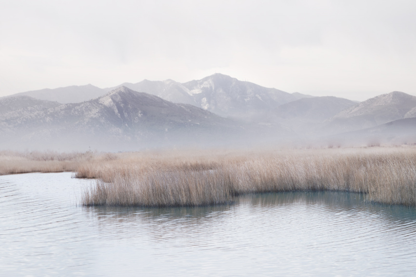 Petros Koublis - Bluebell, minus37