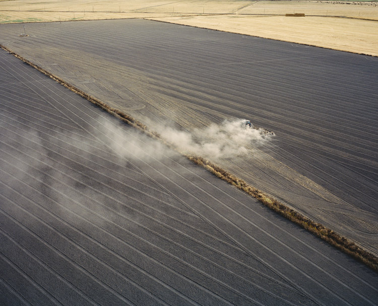 Mustafah Abdulaziz - Agriculture fields near San Joaquin River near Antioch, California, USA, 2015.
