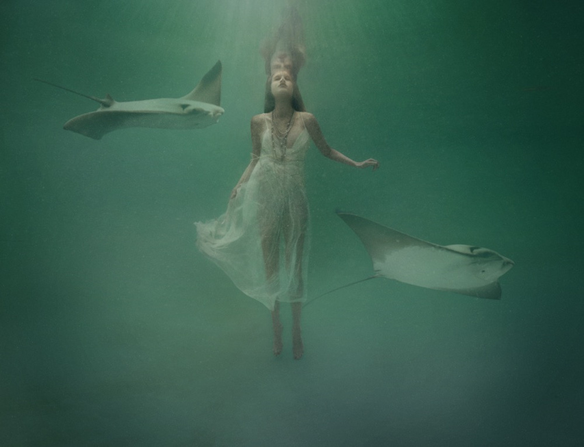 Rebecca Handler - Untitled, Underwater Series, Minus37
