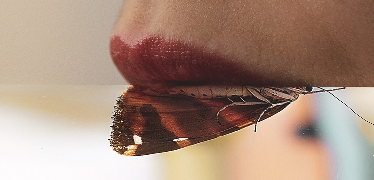 Monica Carvalho - Shut Your Moth! (detail), 2018