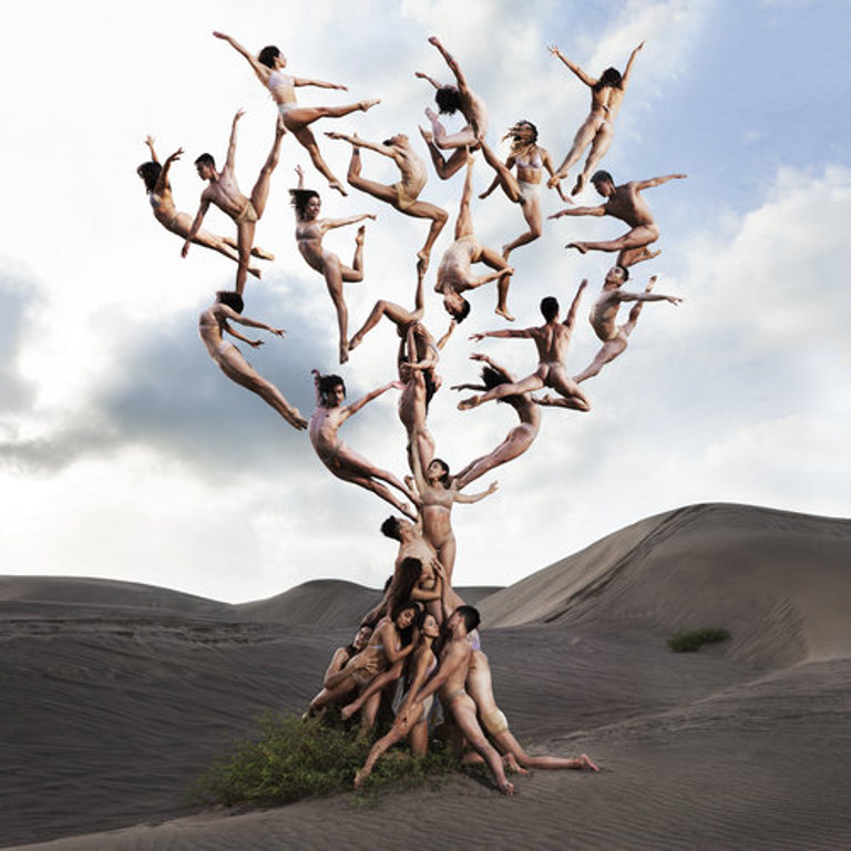 Rob Woodox - Dunes Tree, Coneptual series, minus37